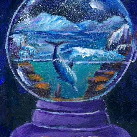 Snowglobe With Dolphin In The Artic 720h60