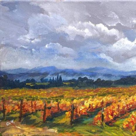 Vineyard In The Fall Feature Image 500s70