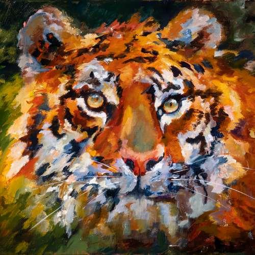Tazz the Tiger