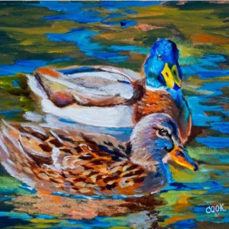 Two Mallard Ducks FI 500s70