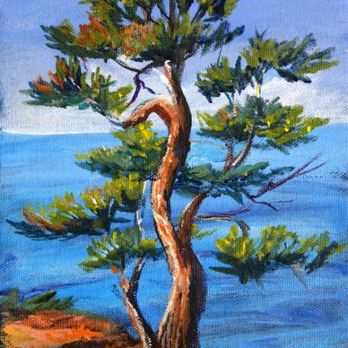 Two Different Trees and an Angle Brush – Back to Basics