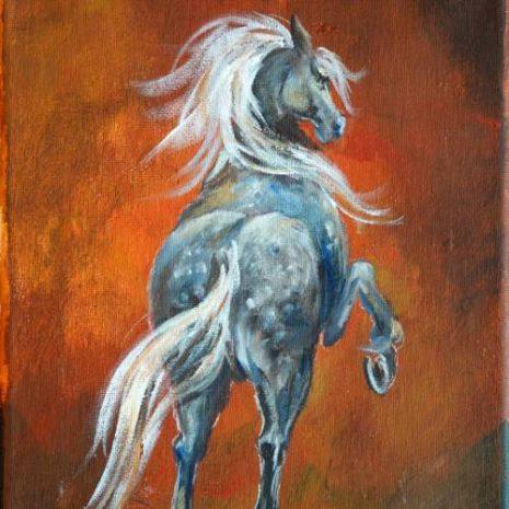 Dapple Gray Horse FI 500s70
