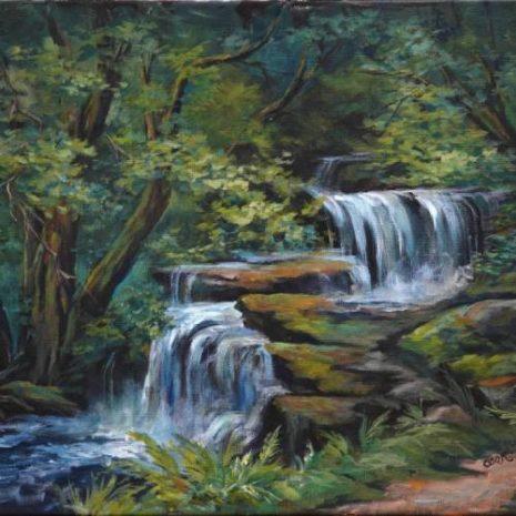 Depp Forest Waterfalls FI 500s70