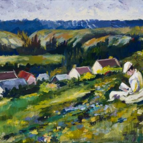 French Meadow In The Valley FI 500s70
