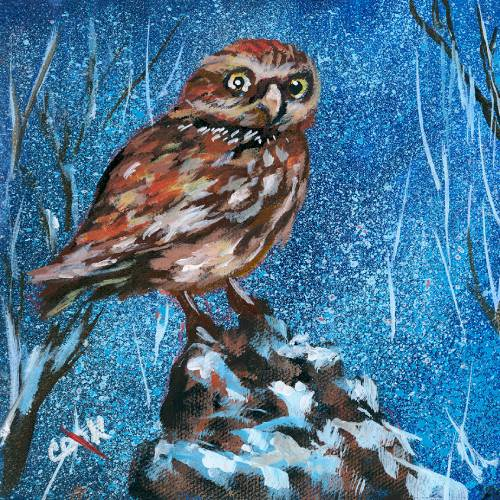 Owl in the Snowy Forest