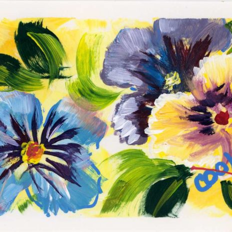 Pansy Flowers 720h60