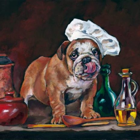 Rufus An English Puppy Chef FI 500s70