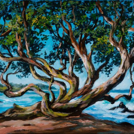 Hana Hawaii Seaside Park Tree Final Image