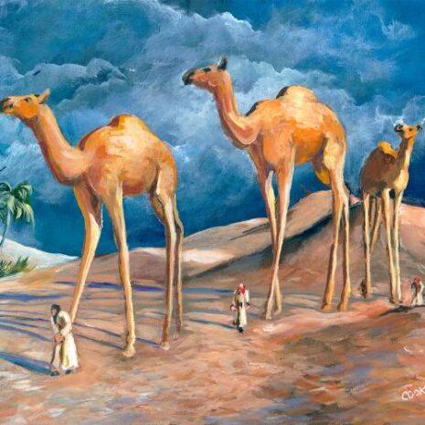 Land Of Urr Walking Camels FI 500h70