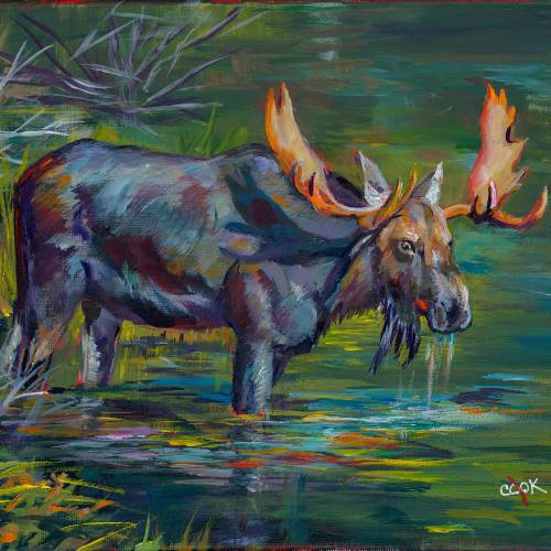 Marty Moose – Large Bull Moose – Introduction